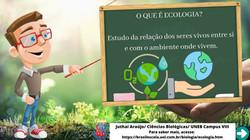Card_O que é Ecologia