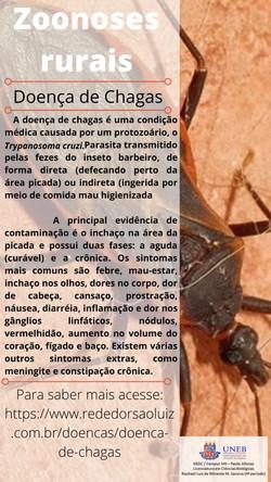 Card_Doença de Chagas