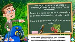 Card_Fauna e Flora
