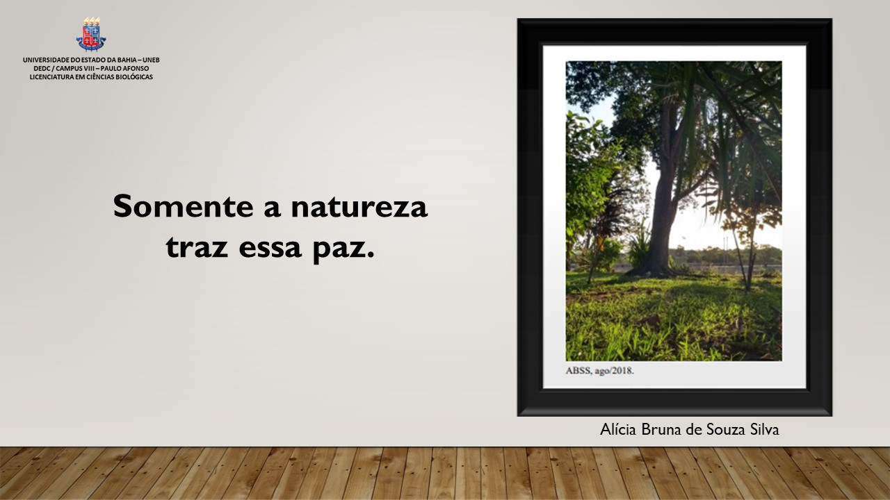 Somente a natureza te traz essa paz.