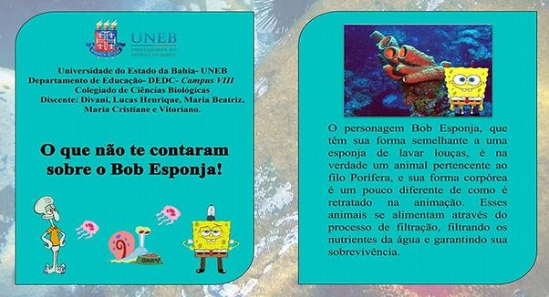 Moluscos_capa_Cartilha_2021.1.jpg