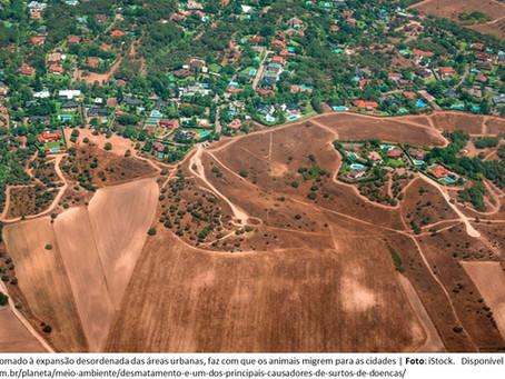 """Desmatamento, Alterações Climáticas e Pandemia: relação causa e efeito, """"bombástica""""."""