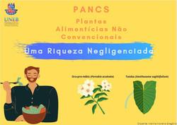 Card_PANC-2