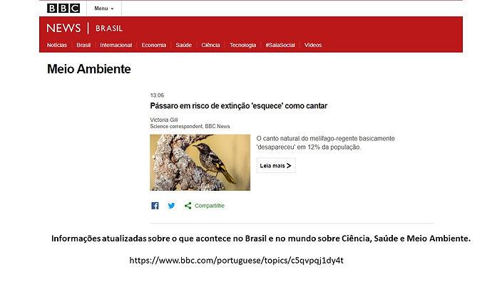 BBS_Meio Ambiente_8.jpg