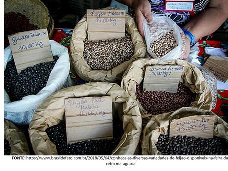 """Feijão: fonte de proteína & """"poço"""" de veneno?"""