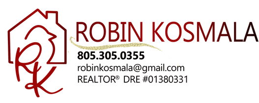 Robin Kosmala logo horizontal with glitt