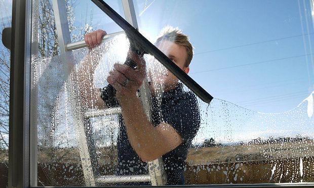 A professional window cleaning washing a window on a ladder in Savannah, Georgia