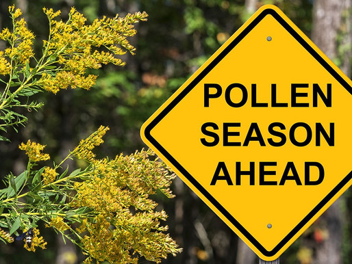 Pollen- Pressure Wash It Away
