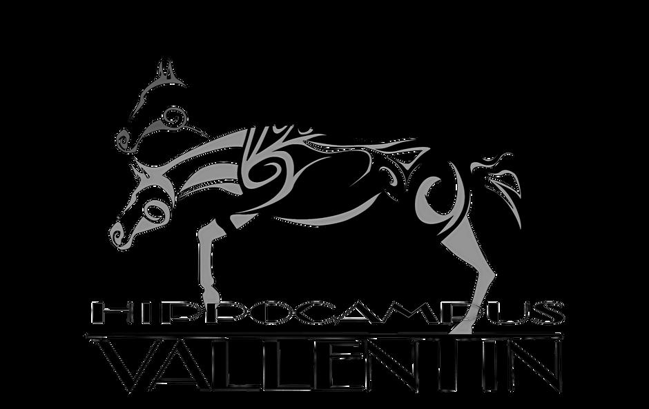 Logo_Hippocampus_schwarz_edited_edited.p