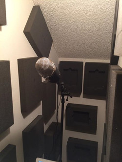 I received a new and upgraded mic today _3