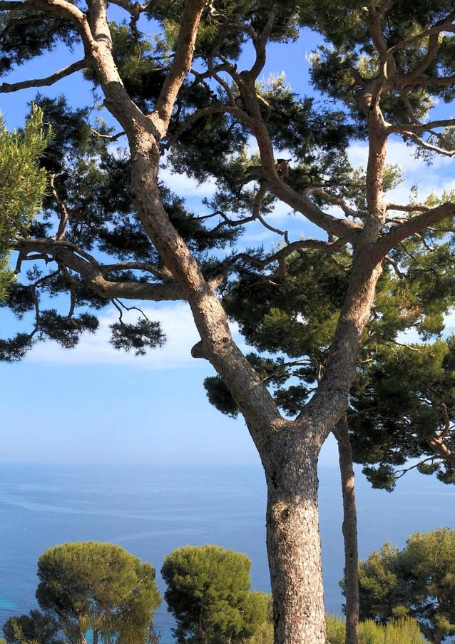Panoramic view Eze Bord de Mer