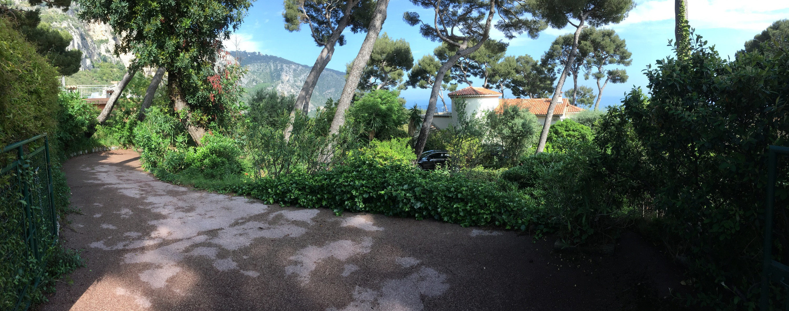 Garden view from entrance gate