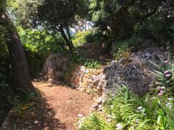 lower lower garden