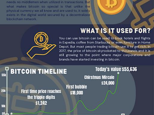 Bitcoin 101: A global phenomenon, de-mystified and visualized