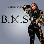 B.M.S 2MEKA DIAZ B.M.S.