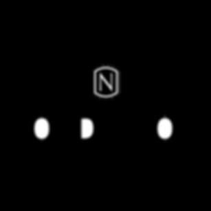 nordstrom-logo-png-transparent.png
