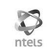 ntels_edited.png