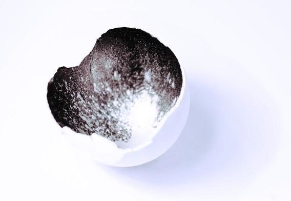 egg space4.jpg