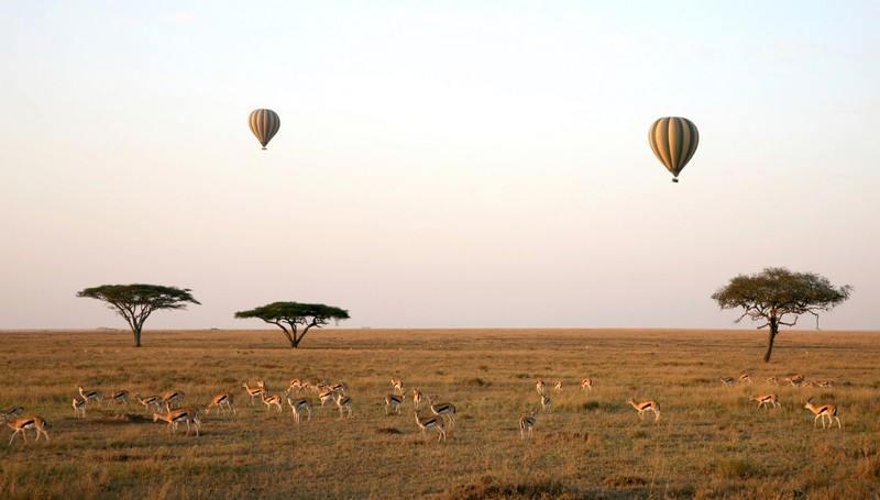 serengetilandscape2.jpg