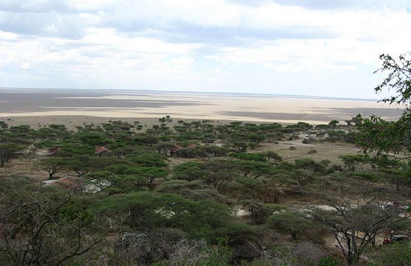 SerengetiPlain.jpg