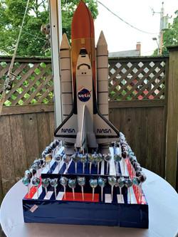 NASA SCRUBBED