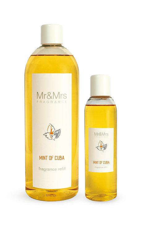 Сменный аромат 200 мл BLANC MINT OF CUBA (Мята Кубы)