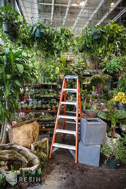 Floral Art inside ladder