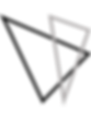AVS Logo.png
