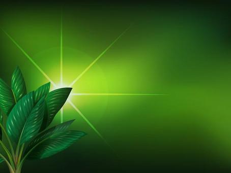 Corfo crea Crédito Verde para potenciar proyectos de energía renovable