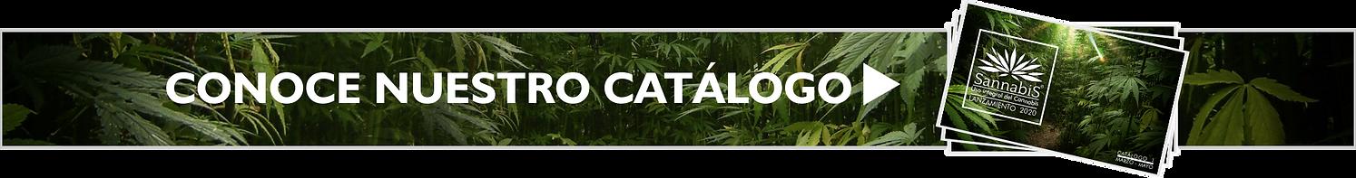 BANER CATALOGO.png