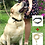Thumbnail: Kit mascotas (lazo + collar) EAS