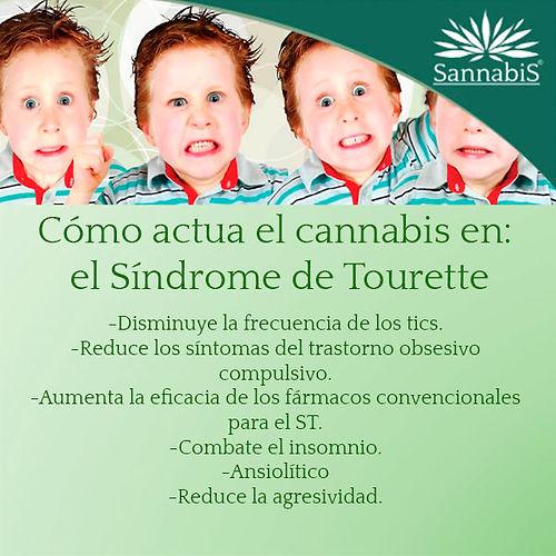 cannabis y sindrome de tourette.jpg
