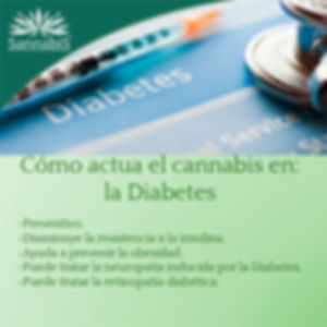 cannabis y Diabetes.jpg