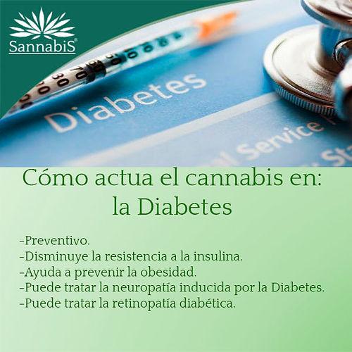 cannabis y Diabetes.jpg