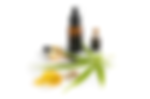 semilla cannabis.png