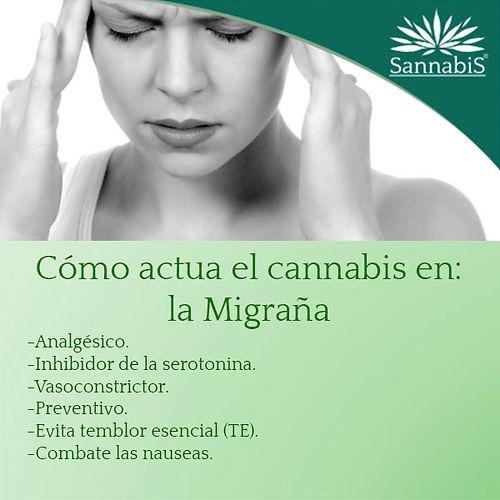 cannabis_y_migraña.jpg