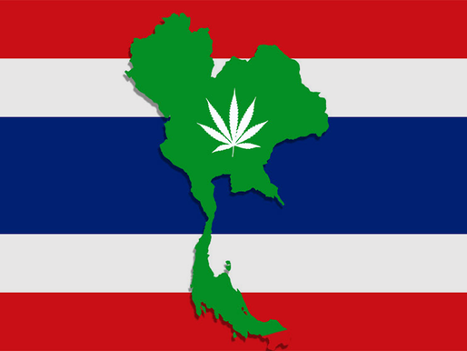 Tailandia se une a los países que han legalizado el cannabis medicinal