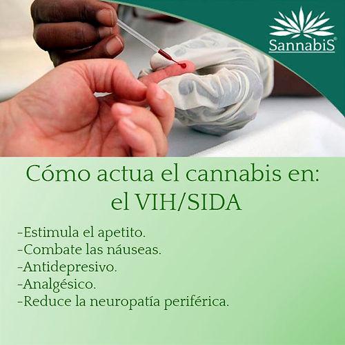 cannabis y vih sida.jpg