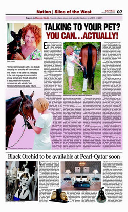 Qatar Tribune Newspaper- June 25th.