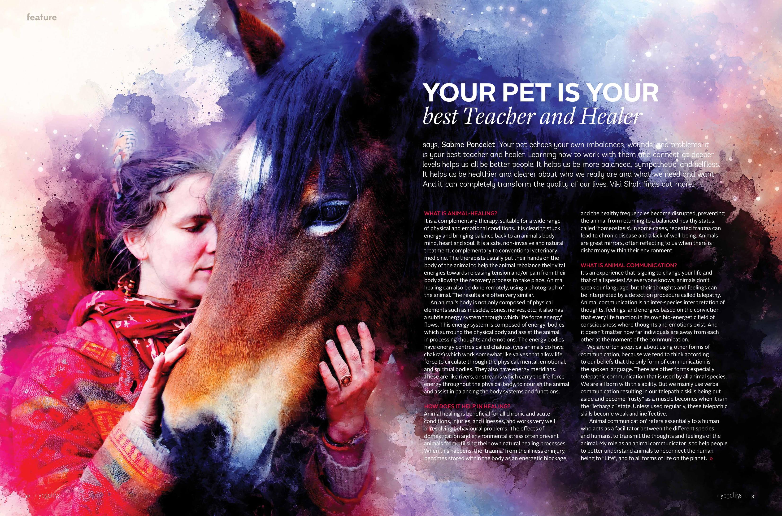 your pet is your best teacher-1