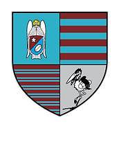 logo-rugby-maastricht-vecto-blanc.png