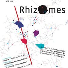 rhizomesgaelle.jpg