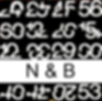 fond n&b ok_edited_edited.png