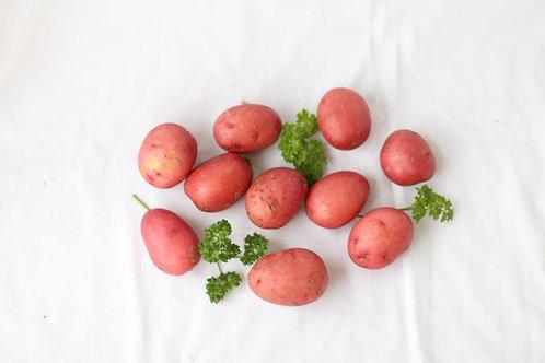 Freshly-dug Potatoes