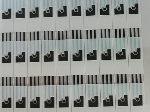 Screen Printed Graphene Electrodes (Type 1)