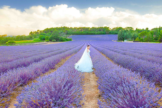 Provence-prewedding--0137.jpg