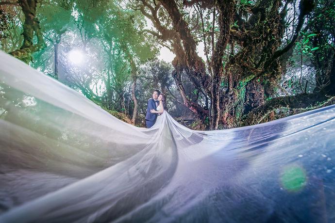 Malaysia cameron Pre-Wedding -34.jpg