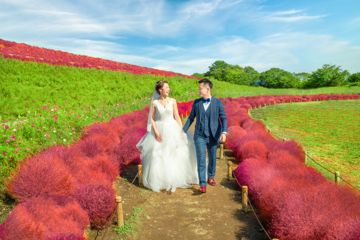 Ibaraki Pre-Wedding C&M17.jpg