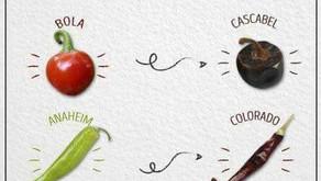 Chilis - Fresh vs. Dried