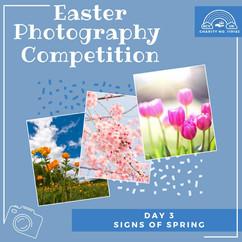 Easter Photo Comp.jpg